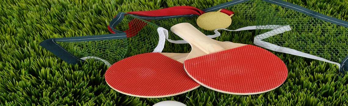 table tennis milano
