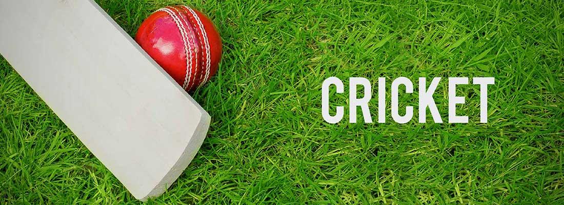 Cosco Cricket Tennis Ball Cosco Cricket Ball Cosco